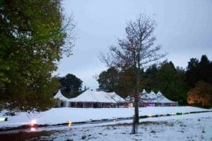 Marquee hire borders in woodland on a winters day
