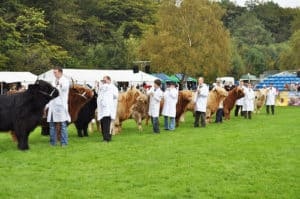 summer agricultural show marquee hire in Scotland
